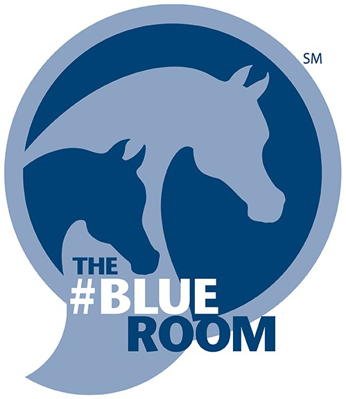 2014-AHA Blue Room Logo-final-web