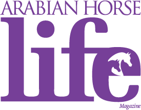 AHL masthead-final-purple