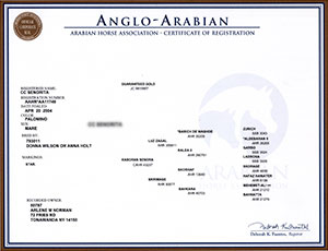 Registration_Anglo_Cert Border