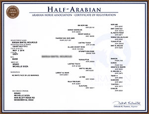 Registration_Half_Cert Border